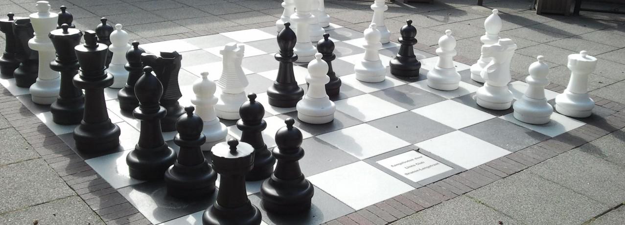 Lions schenken levensgroot schaakspel